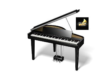 Custom Digital Grand Piano รุ่น DGP-55EBP