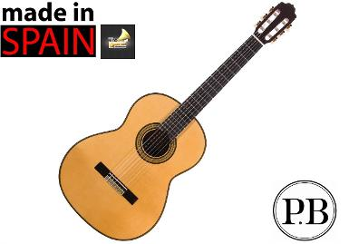 Classical Guitar รุ่น Bach Pro 500