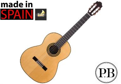 Classical Guitar รุ่น Bach Pro 300