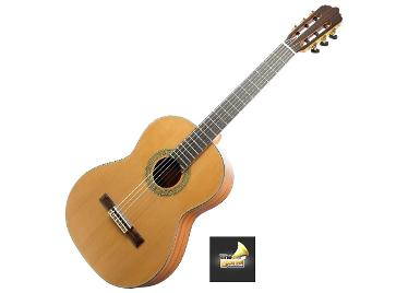 Custom Classical Guitar รุ่น CG-470